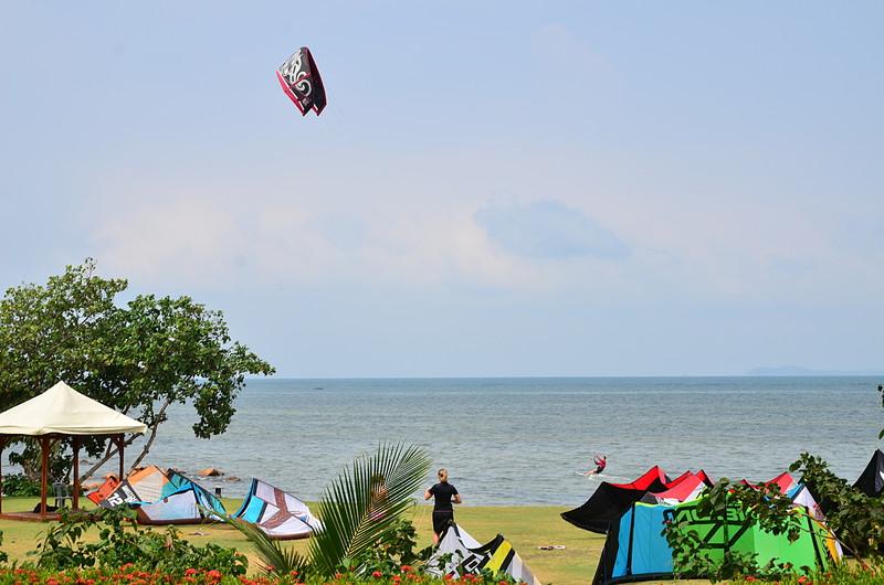 aug 25 9067 kite farm