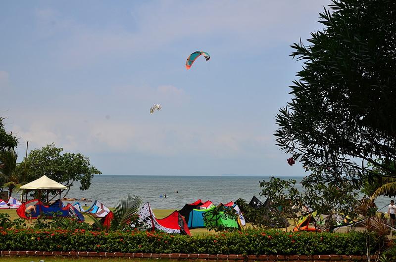 aug 25 9083 kite farm