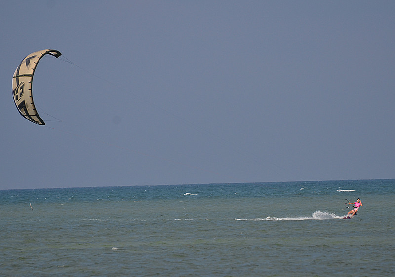 aug 25 9173 barb kite
