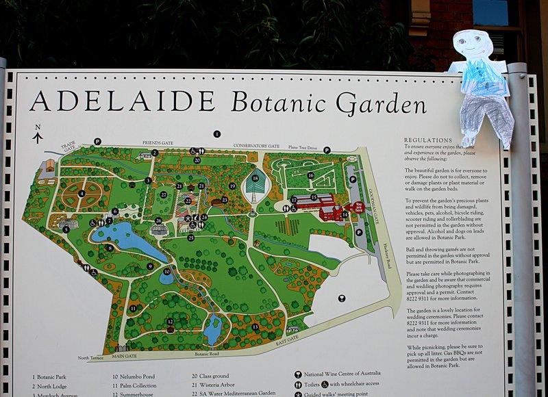 dec 01 6940 flat jacob adelaide botanic garden
