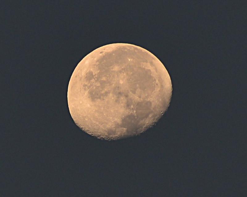 dec 02 2566 morning moon