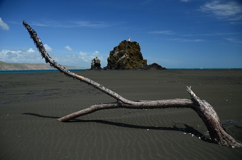 dec 03 5822 driftwood