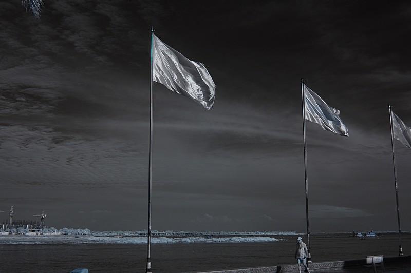 dec 21 9815 flags
