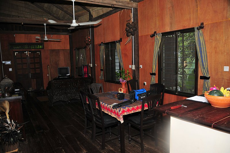 dec 23 4221 inside treehouse