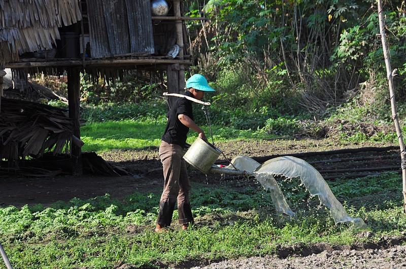 dec 24 2890 watering garden