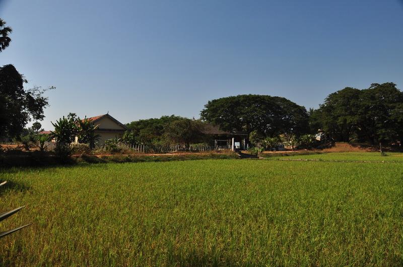 dec 24 2979 rice school