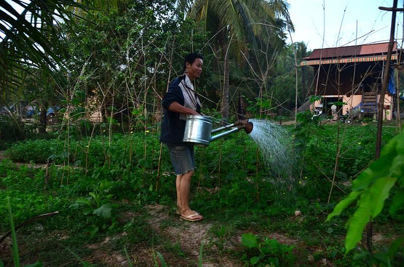 dec 25 9057 water garden