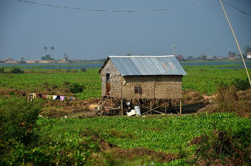 dec 25 9543 rice house