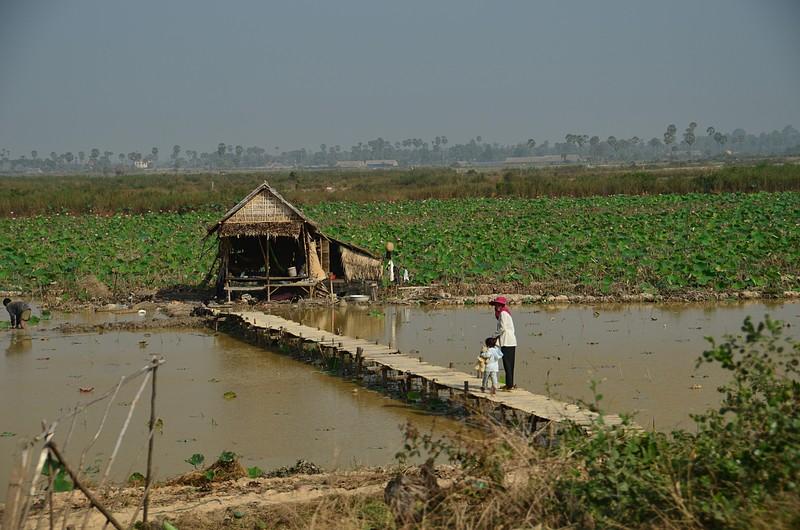 dec 25 9581 farmer hut