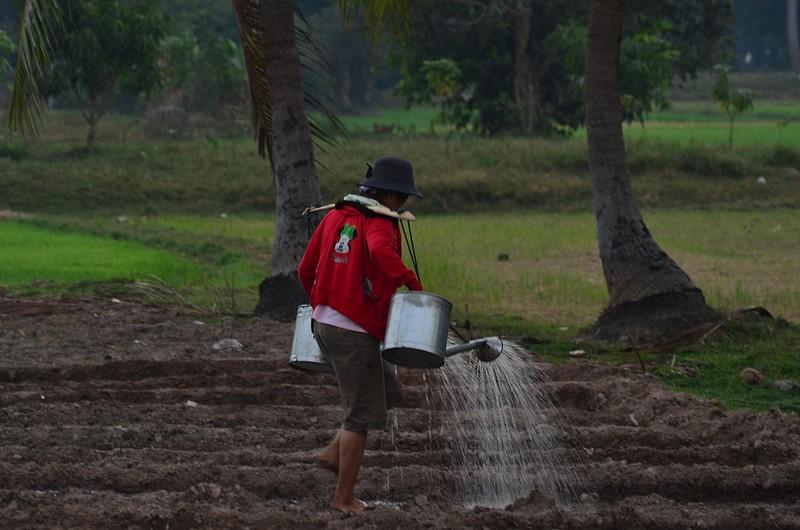 dec 28 1698 watering