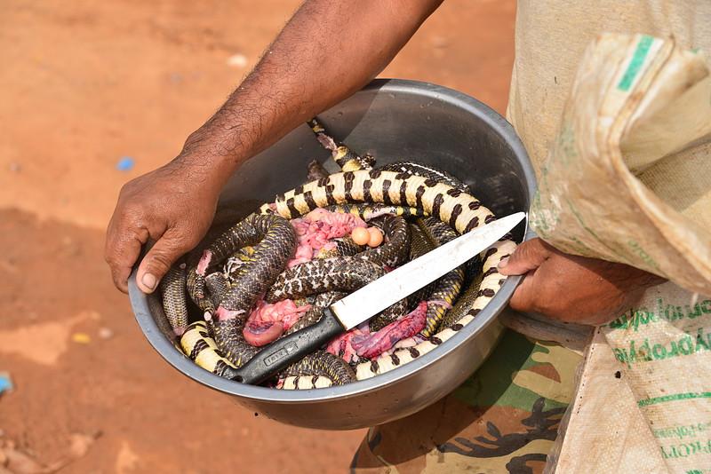 dec 28 4983 snake meat