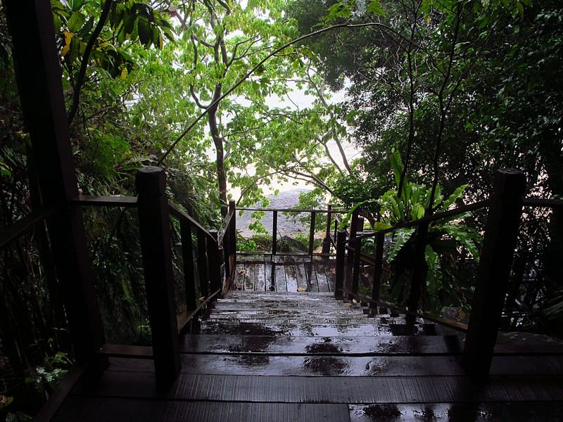 feb 03 1728 rain walk