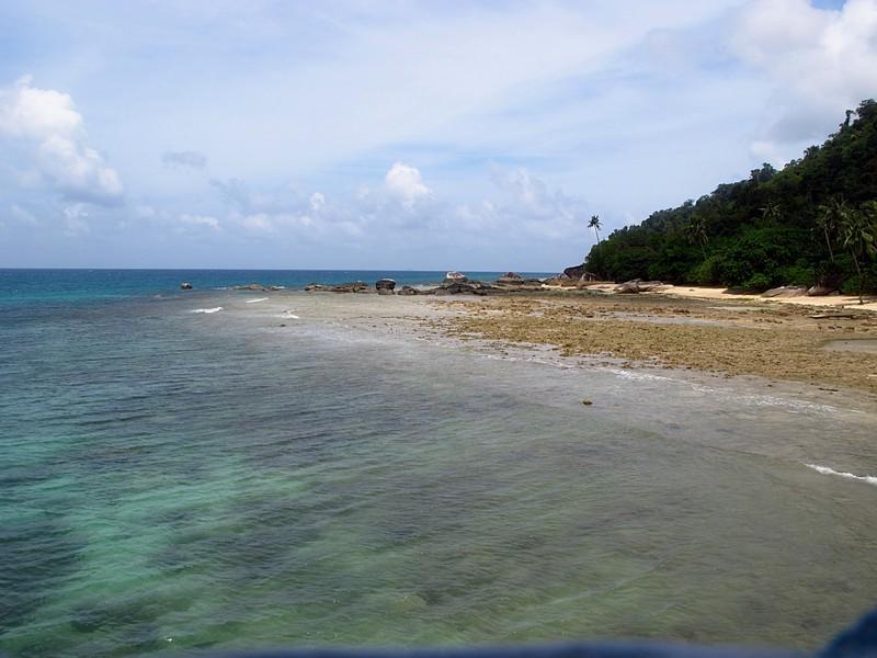 feb 05 2515 coral