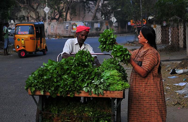 feb 05 6367 inspecting greens