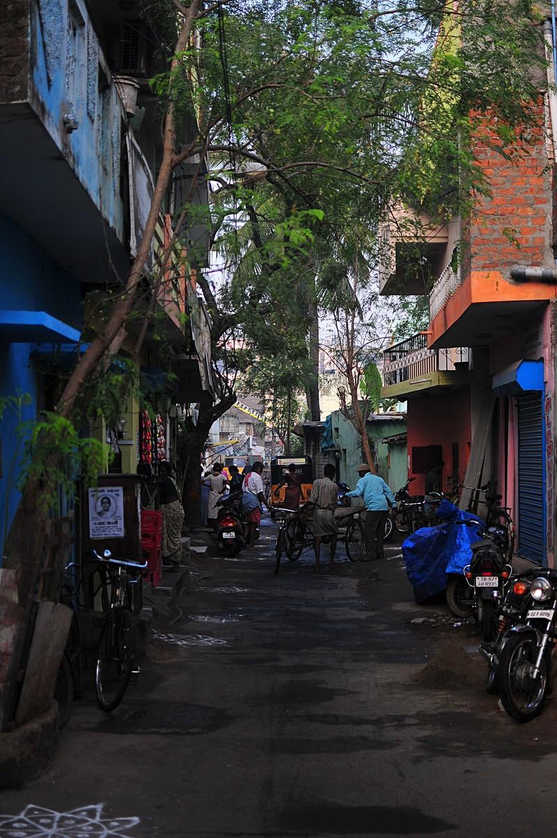 feb 05 6438 6438 morning alley