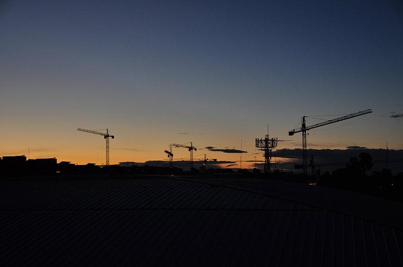 feb 07 1403 4 cranes