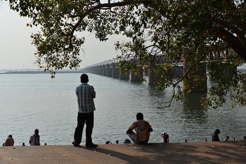 feb 10 8568 bridge watching