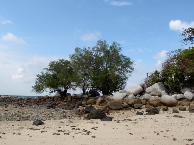 feb 12 1130 island
