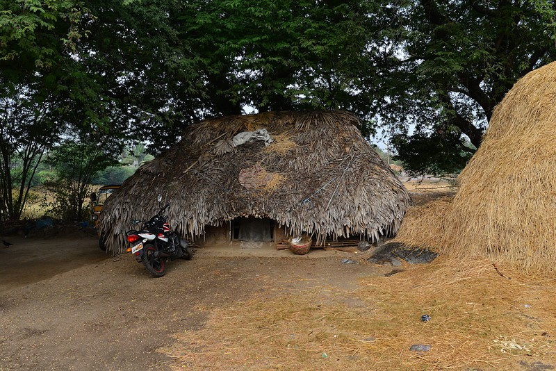 feb 15 0855 thatched roof