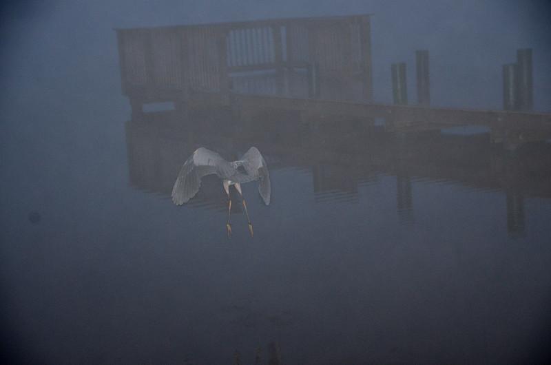 feb 17 5803 flying into fog