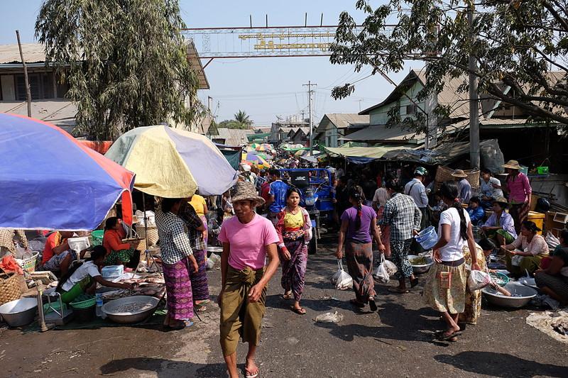feb 21 5430 fish market