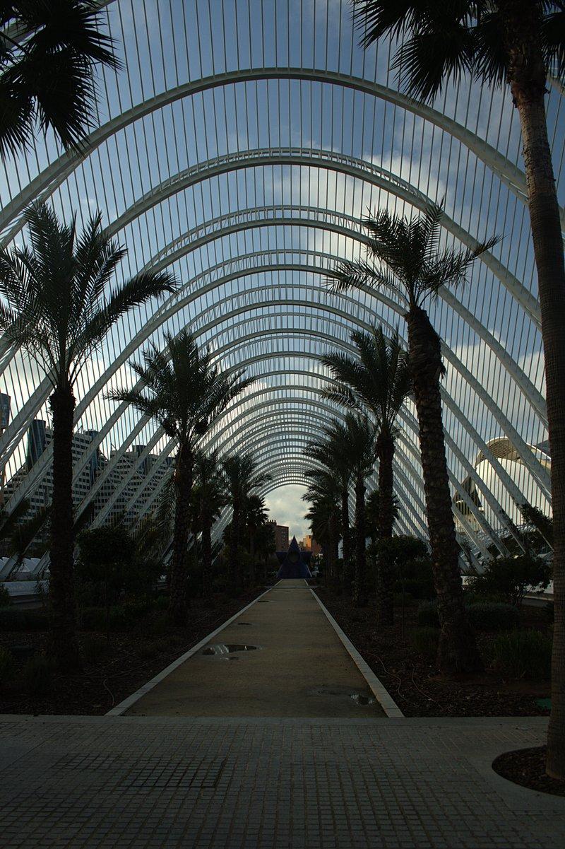 feb 25 9743 walk garden