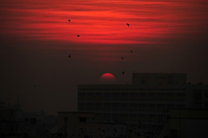 jan 08 1493 sunrise flight