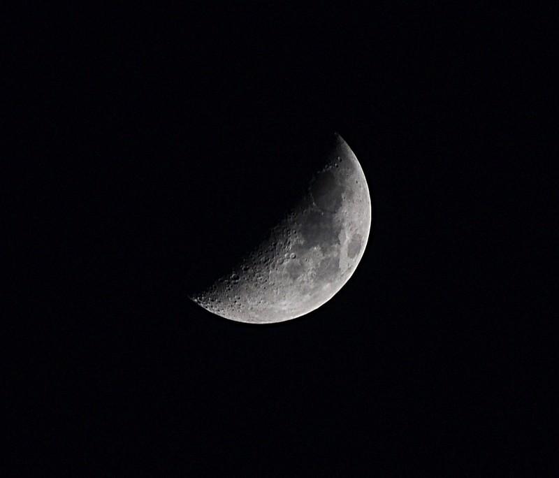 jan 11 3061 moon