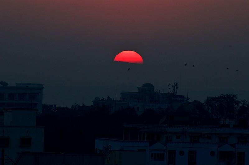jan 14 2157 sunrise birds
