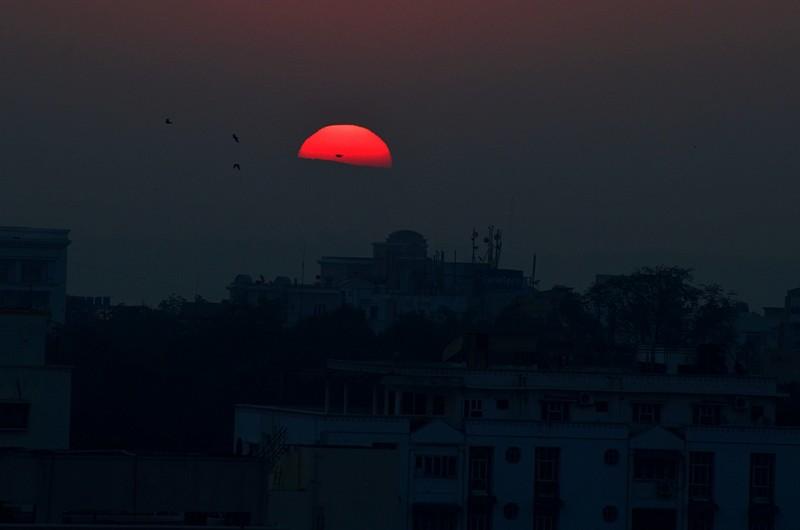 jan 14 2161 sunrise birds
