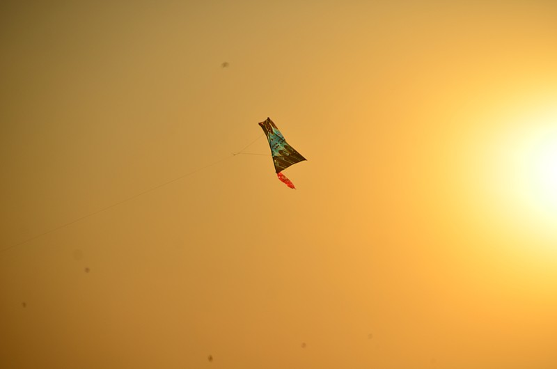 jan 15 4312 sunlit kite