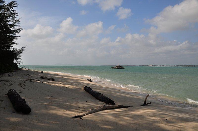 jan 17 8157 beach