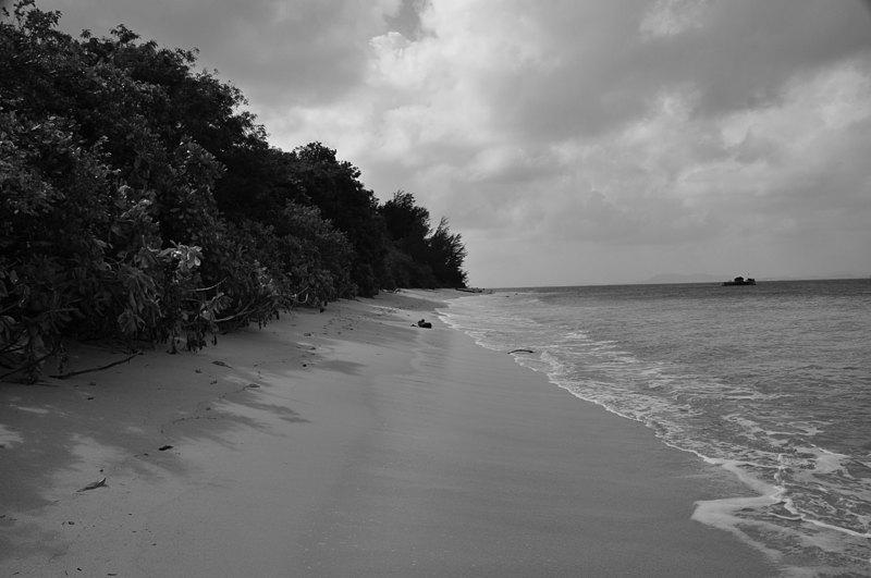 jan 17 8201 beach bw