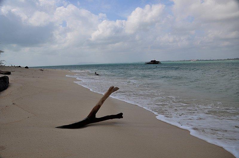 jan 17 8214 driftwood