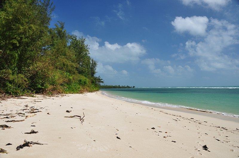 jan 17 8243 island sand