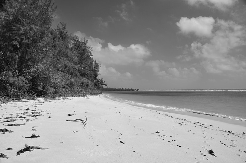 jan 17 8243 island sand bw