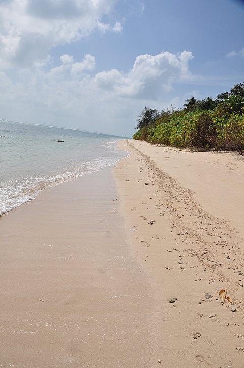 jan 17 8263 no sand feet