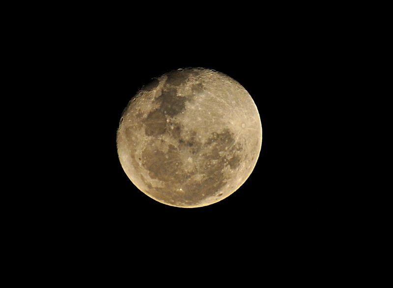 jan 21 4184 evening moon