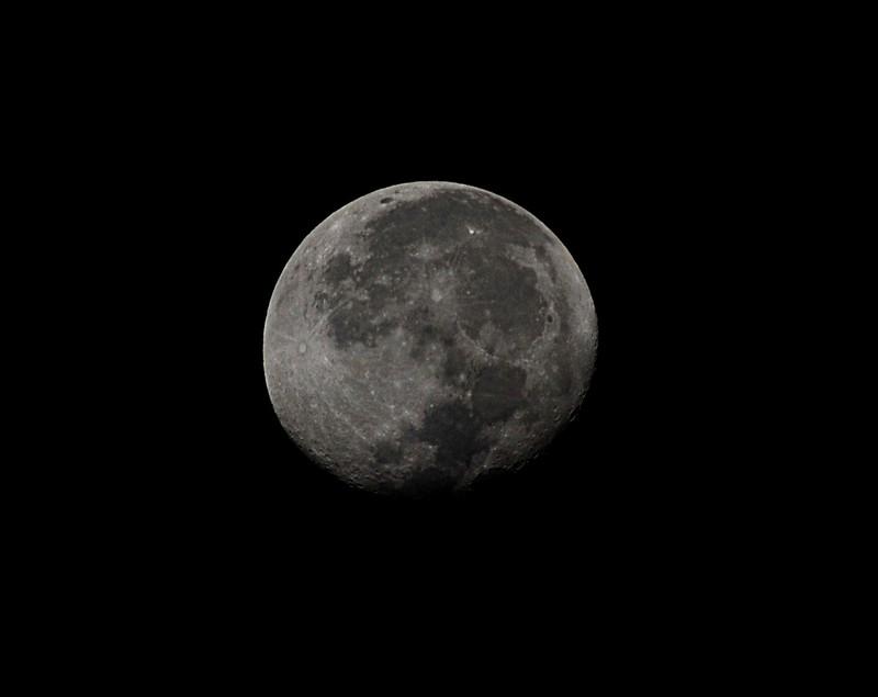 jan 22 4197 morning moon