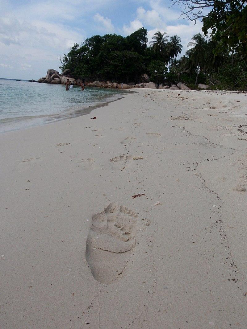 jul 04 0736 footprints