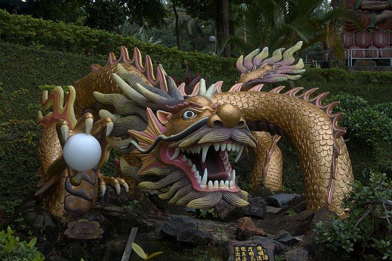 jun 08 4671 dragon
