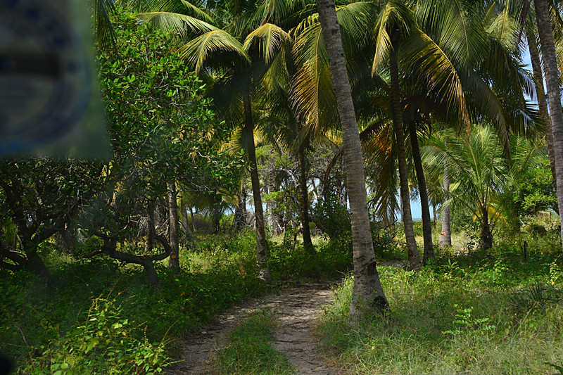 jun 15 4108 ocean road
