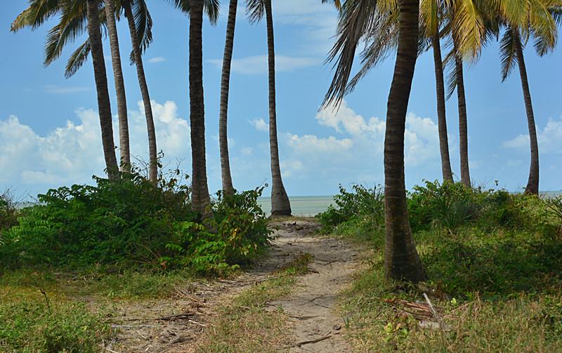jun 15 4111 ocean road