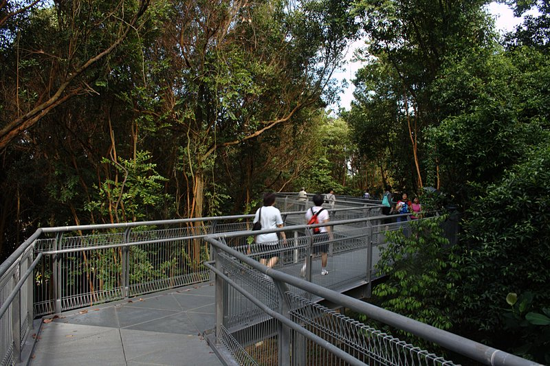 jun 28 5643 forest walk