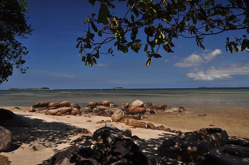 mar 06 4006 white sand framed