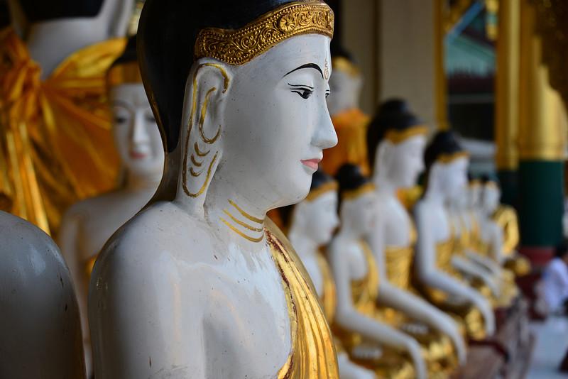 mar 07 0467 near buddha