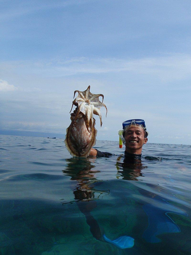 mar 07 3245 squid
