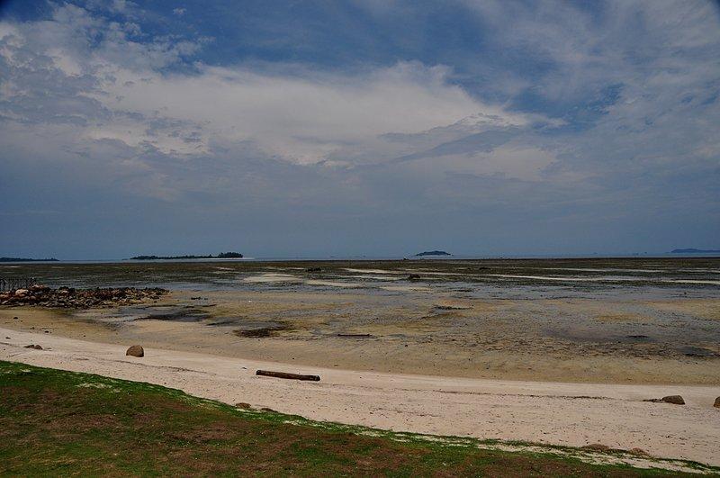 mar 07 4436 low tide