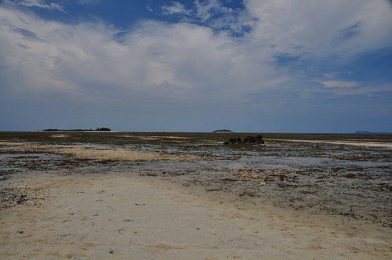 mar 07 4455 low tide