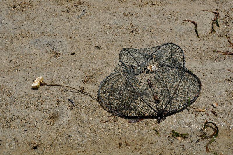 mar 07 4469 crab trap